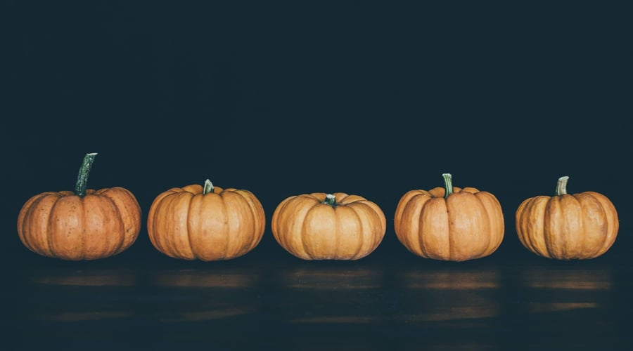 Pumpkins are lined up in a row against a dark background.
